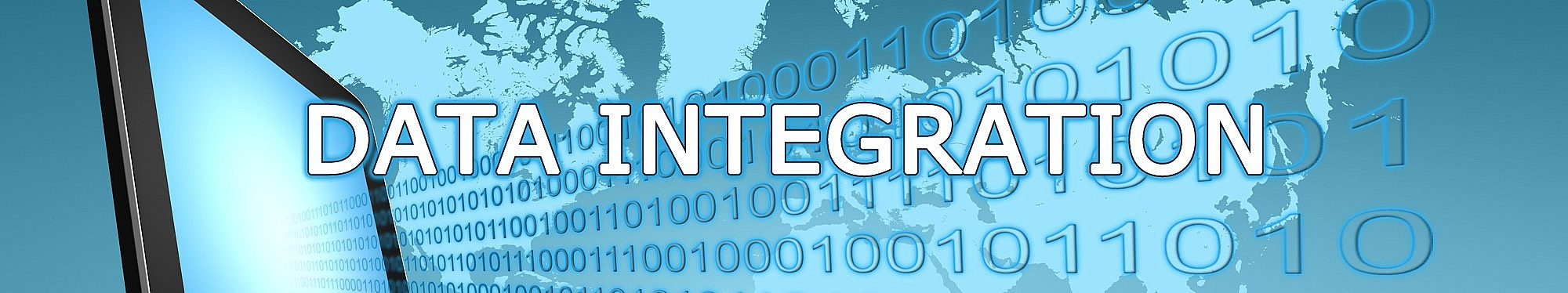 INTEGRATED PARTNER SOLUTIONS, INC.